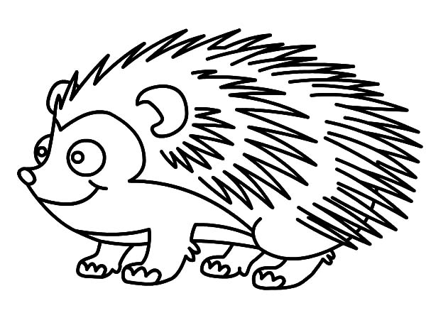 Line Drawing Hedgehog : Hedgehog cartoon drawing at getdrawings free for