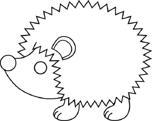 Hedgehog Line Drawing