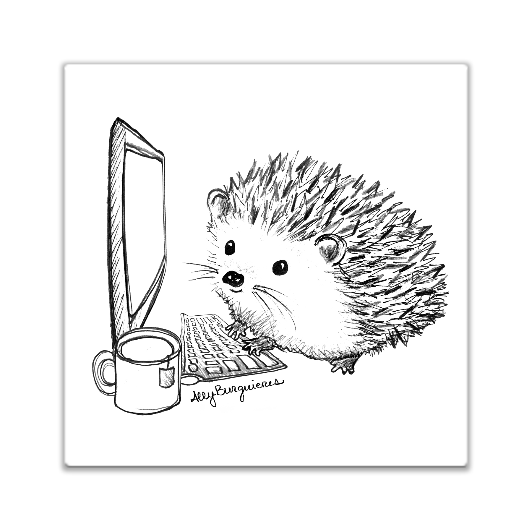 1800x1800 Hedgehog Emails