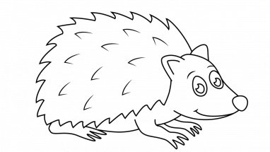 382x215 How To Draw Hedgehog Joe, Forest Friends, Animals, Easy Step By