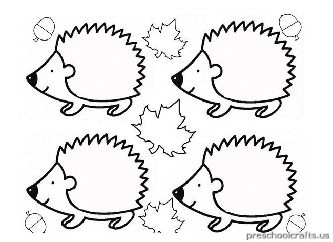 650x472 Appealing Hedgehog Coloring Pages 89 With Additional Line Drawings