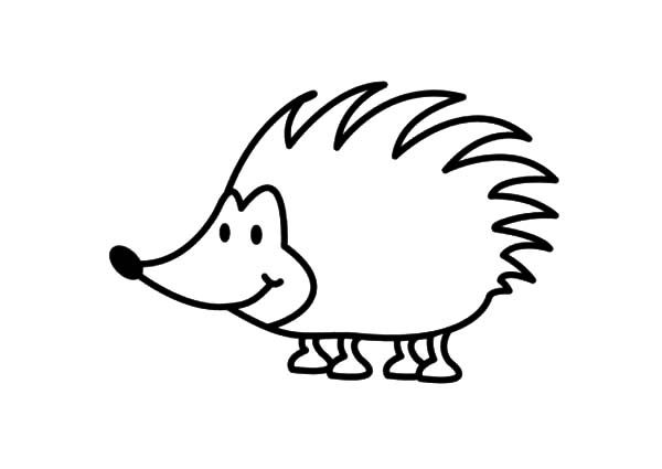 600x425 Smiling Hedgehog Coloring Pages Smiling Hedgehog Coloring Pages