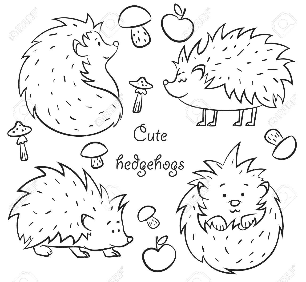 1300x1199 Four Cute Hedgehogs Set, Hand Drawn Vector Illustration Outline