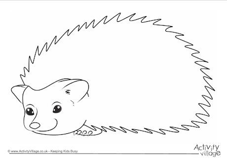 460x326 Hedgehog Frame Fall Coloring Pages Hedgehogs