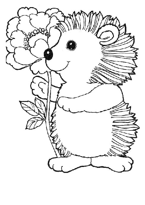 490x690 Coloring Page Hedgehogs