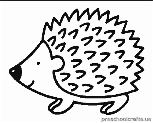 501x402 Coloring Pages Hedgehog Free Printable Hedgehog Coloring Page