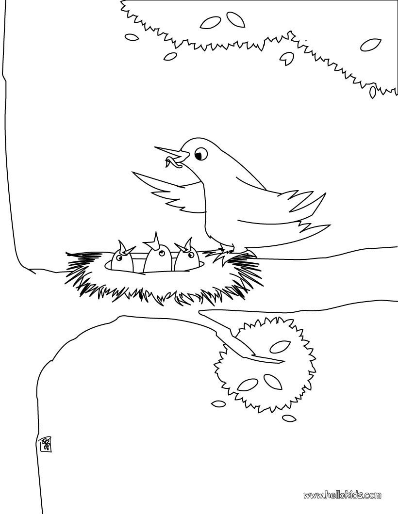 820x1060 Enjoy This Bird Nest Coloring Page. Nice Bird Coloring Sheet. More