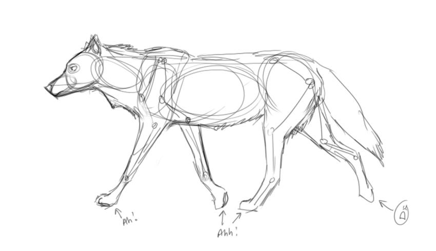 850x490 Help Me Draw Wolves Plz By Silverglass19
