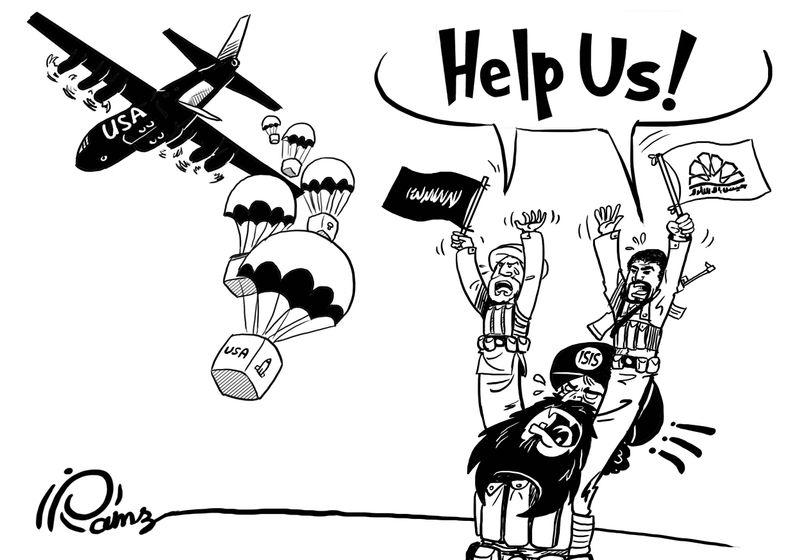 795x560 Cartoon Movement