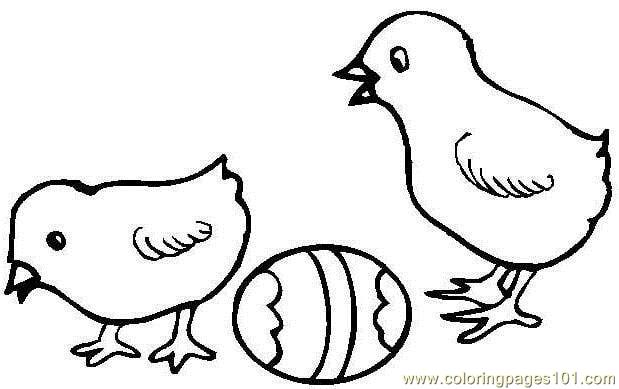 619x389 Easter Hen Chick Coloring Page