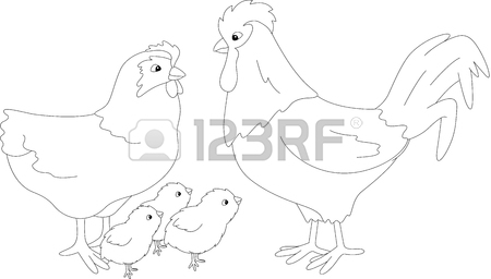 450x256 Hen And Chicks Stock Photos. Royalty Free Business Images