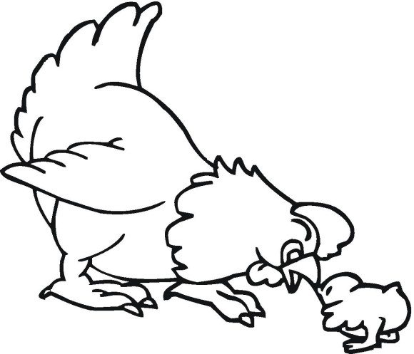 580x497 Little Chick And Hen Farm Animal Coloring Pages Coloring Pages