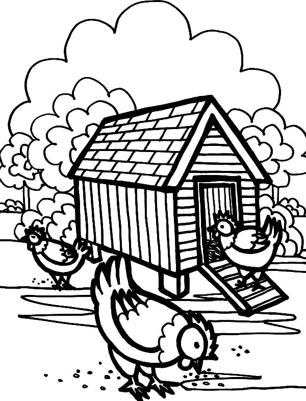 600x786 Three Hen In Front Of Chicken Coop Coloring Pages
