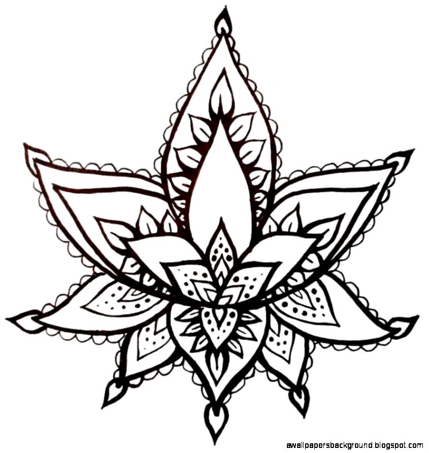 845x892 Lotus Flower Drawing Henna Wallpapers Background