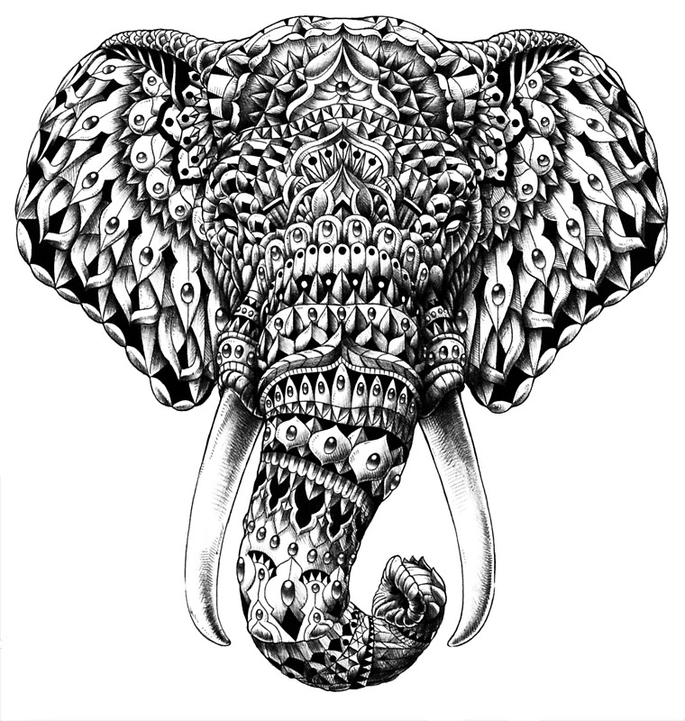 760x800 Ornate Elephant Head Posters By Bioworkz Redbubble