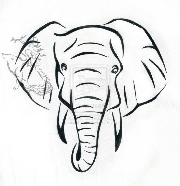 736x762 Collection Of Elephant Black White Line Art Tattoo Design