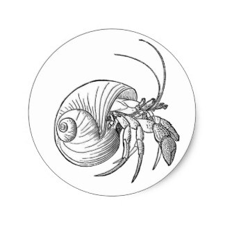 324x324 Hermit Crab Logo Gifts On Zazzle