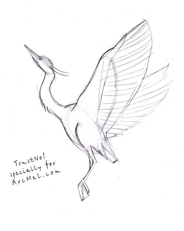 600x753 How To Draw A Heron Step By Step