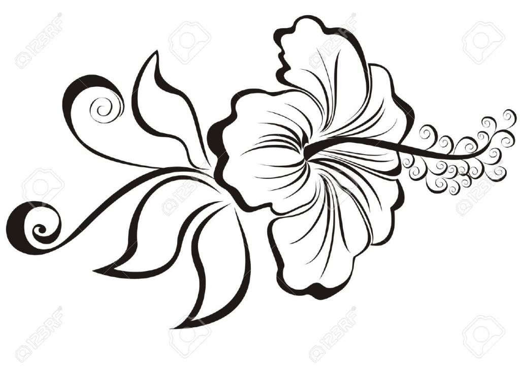 1024x722 Hibiscus Flower Drawing Free Printable Hibiscus Flower Coloring