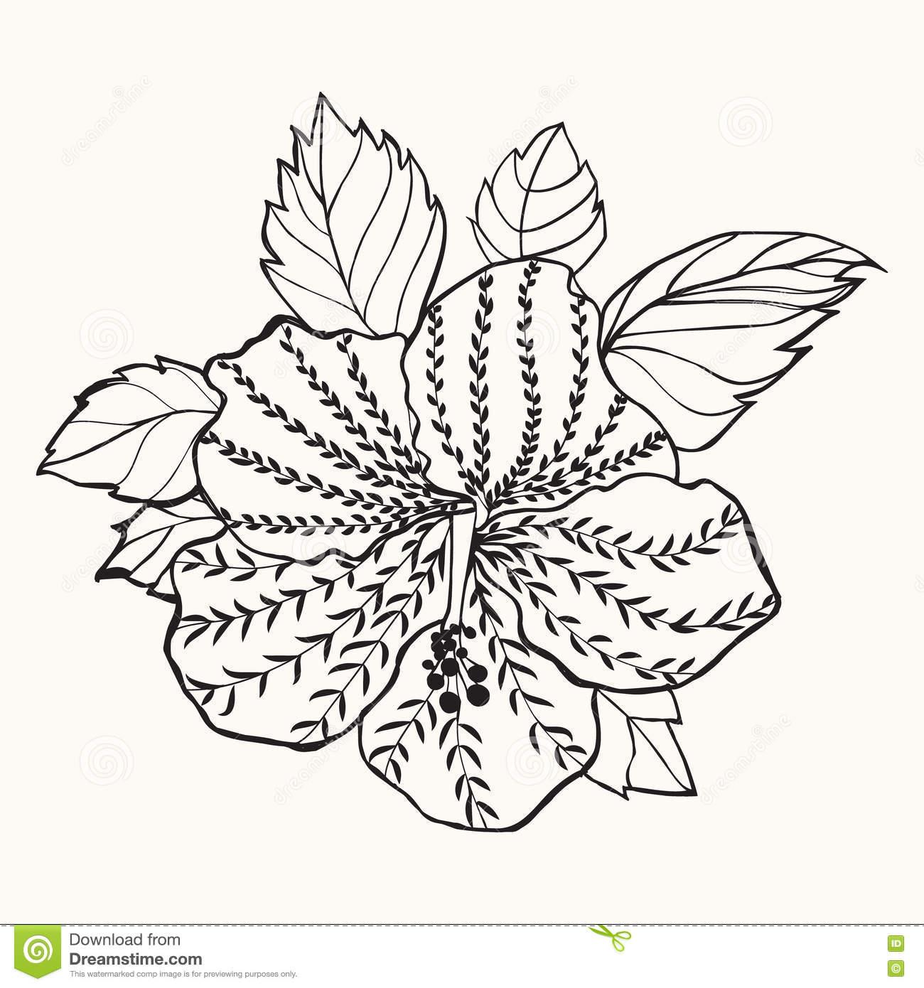1300x1390 Drawn Leaves Hibiscus Leaf