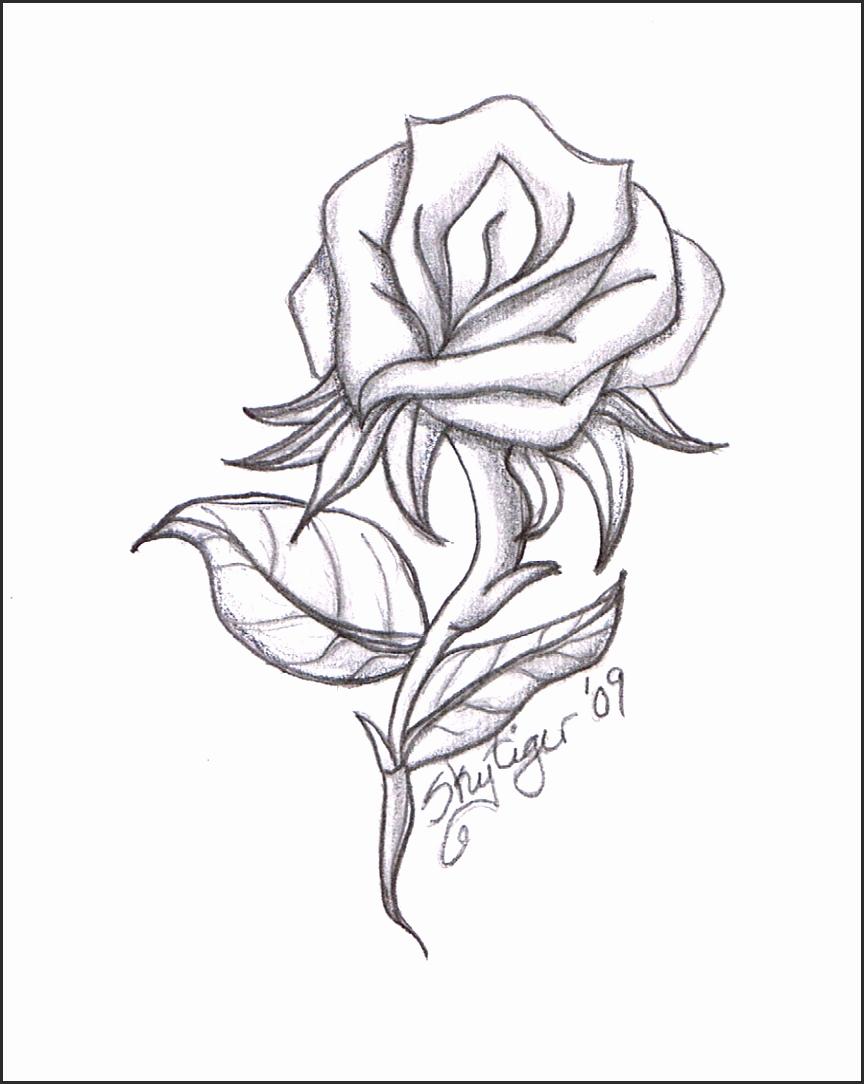 864x1084 Easy Flower Sketches Jfffn Best Of Drawn Hibiscus Cute Easy Flower
