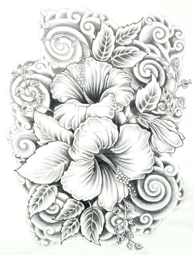 Hibiscus Flower Pencil Drawing at GetDrawings.com | Free for ...