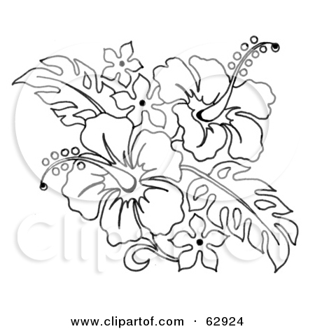 450x470 Collection Of Hibiscus Flowers Tattoo Design