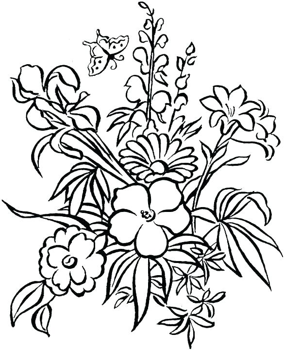 585x720 Hibiscus Flower Coloring Page Hibiscus Flower Drawing Coloring