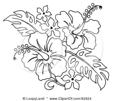 450x401 Hibiscus Flower Line Drawing