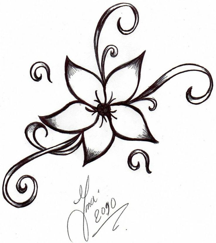 736x830 Pictures Of Easy To Draw Flowers Drawn Hibiscus Cute Easy Flower