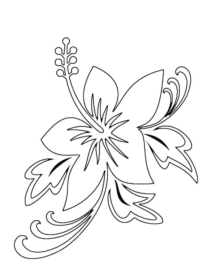 736x952 Hibiscus Flower Coloring Pages Flower Coloring Pages To Print
