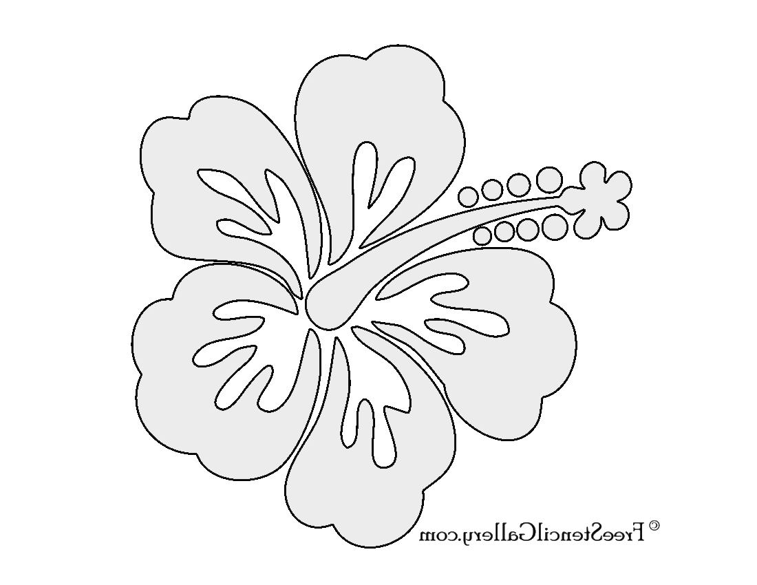 1100x850 Draw And Label A Hibiscus Flower Tag Hibiscus Flower Line Drawing