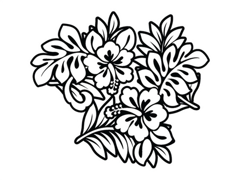 491x368 Hibiscus Free Vector Download (36 Free Vector) For Commercial Use