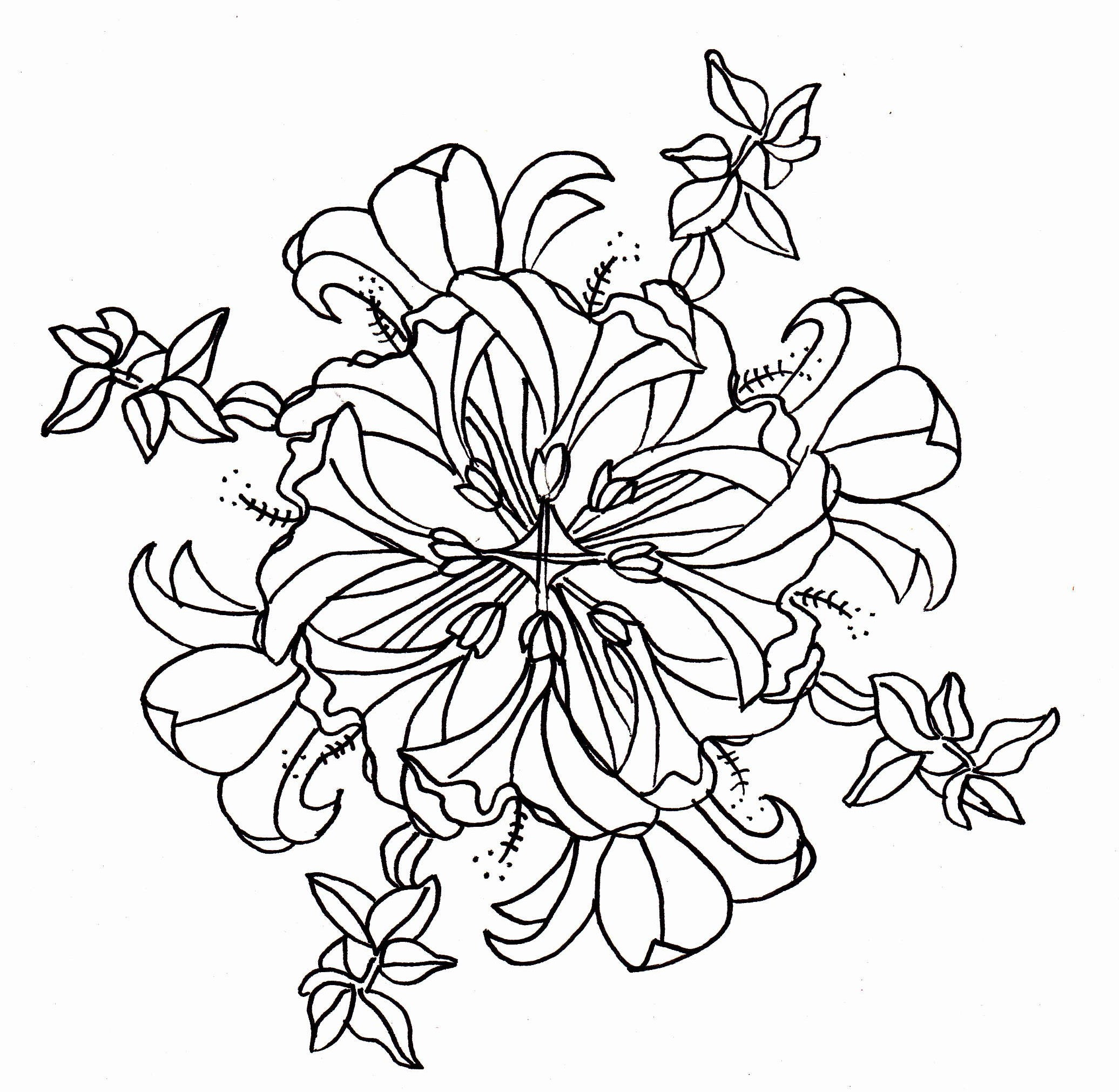 2072x2022 Hibiscus Flower Coloring Pages Free Draw To Color
