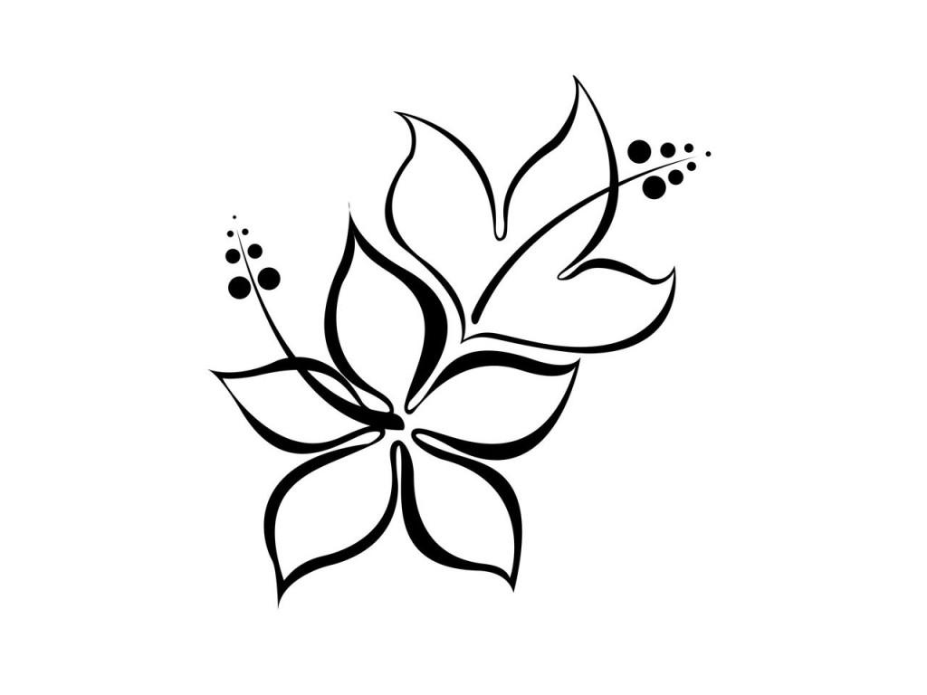 1024x768 Simple Hibiscus Drawing Flower Line