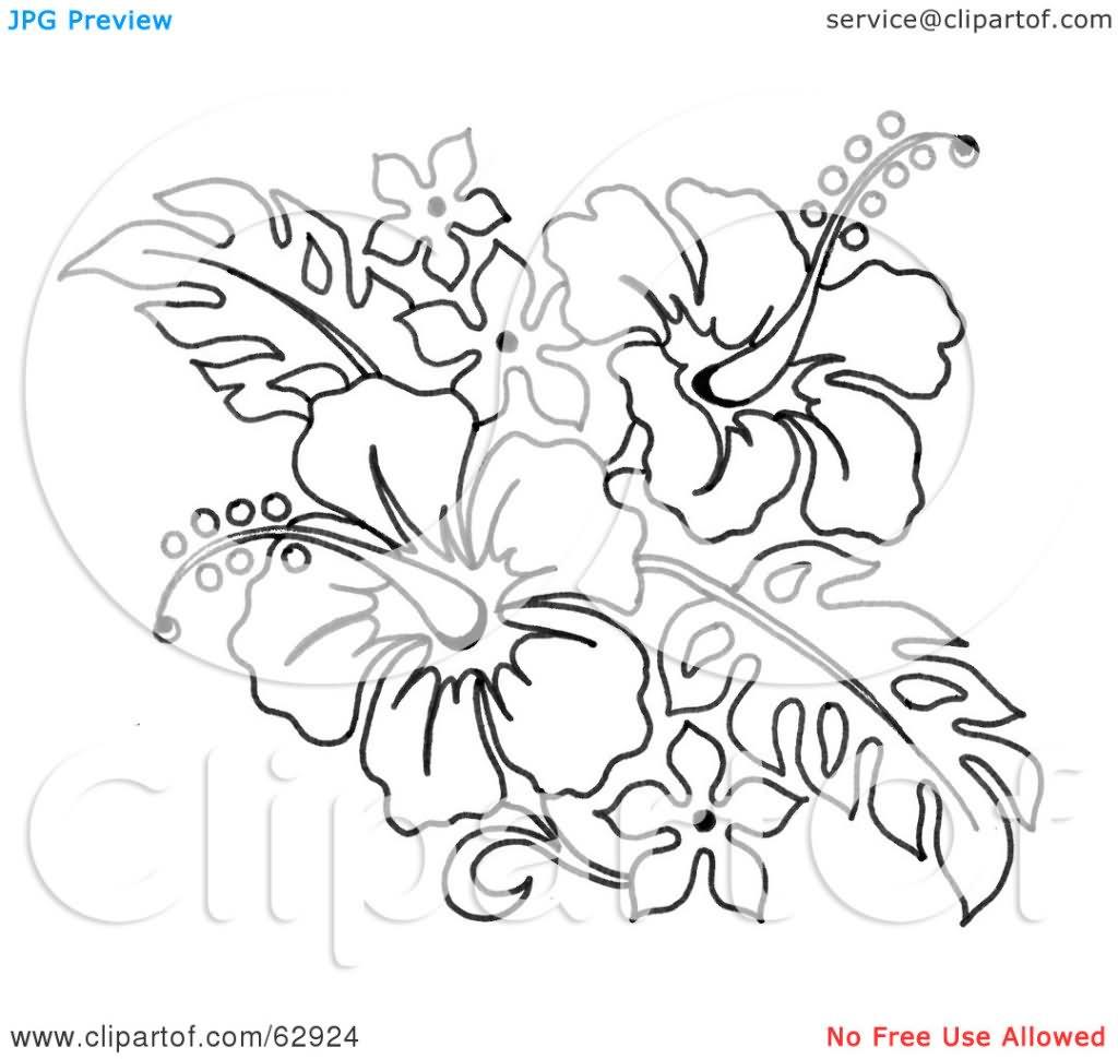 1024x970 Hibiscus Black And White Tattoos