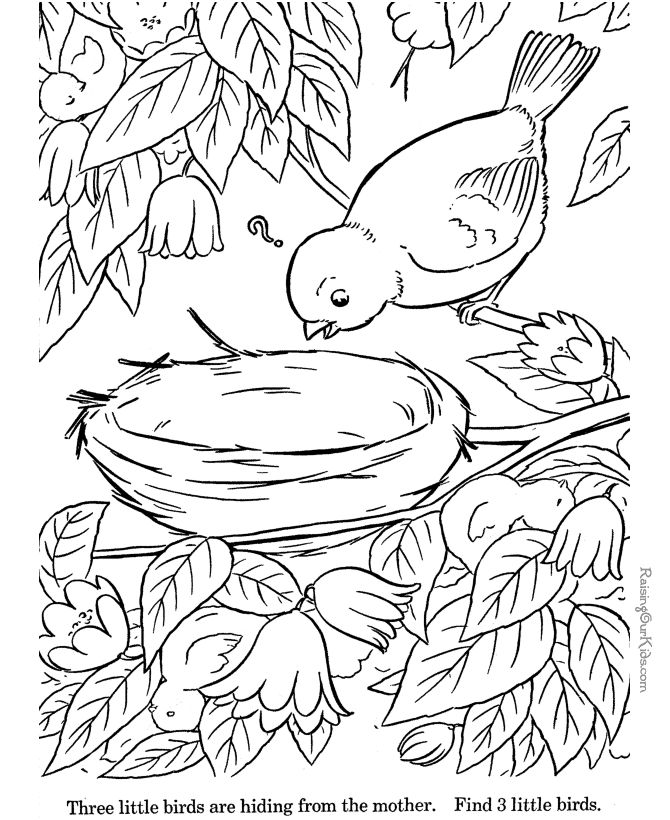 Hidden Drawing At Getdrawings Com Free For Personal Use