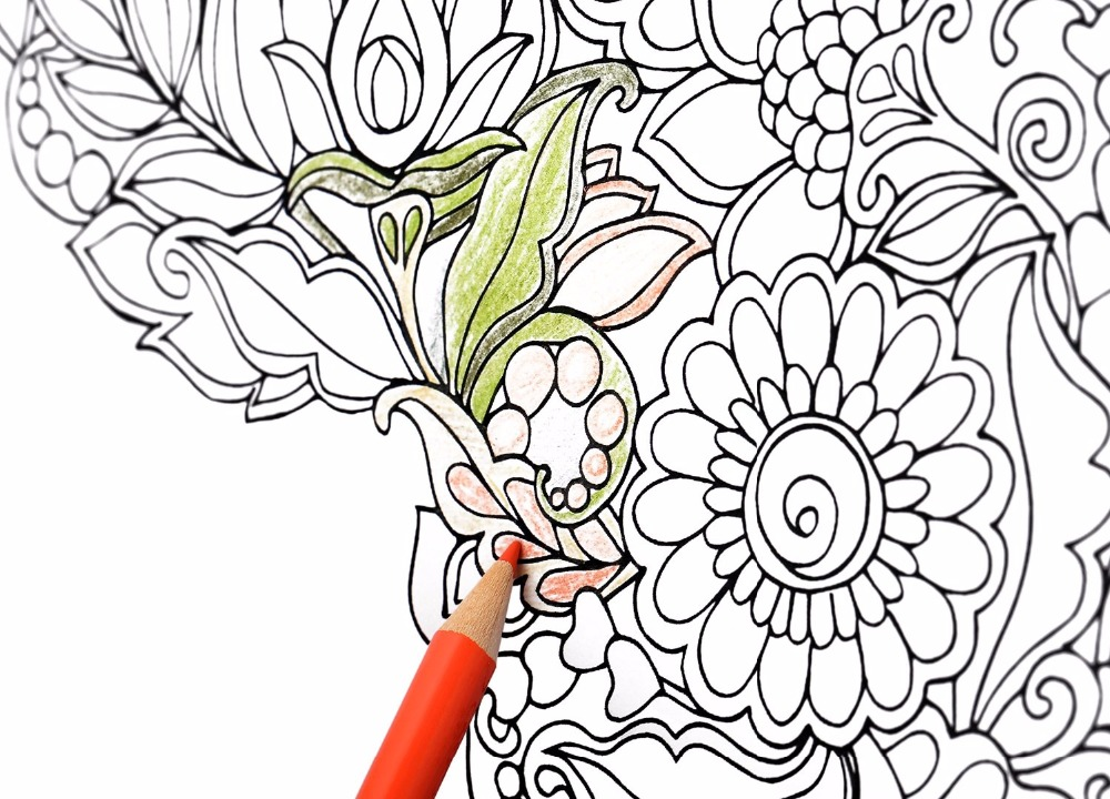 1000x720 Buy Lolliz 72 Colored Pencils Professionals