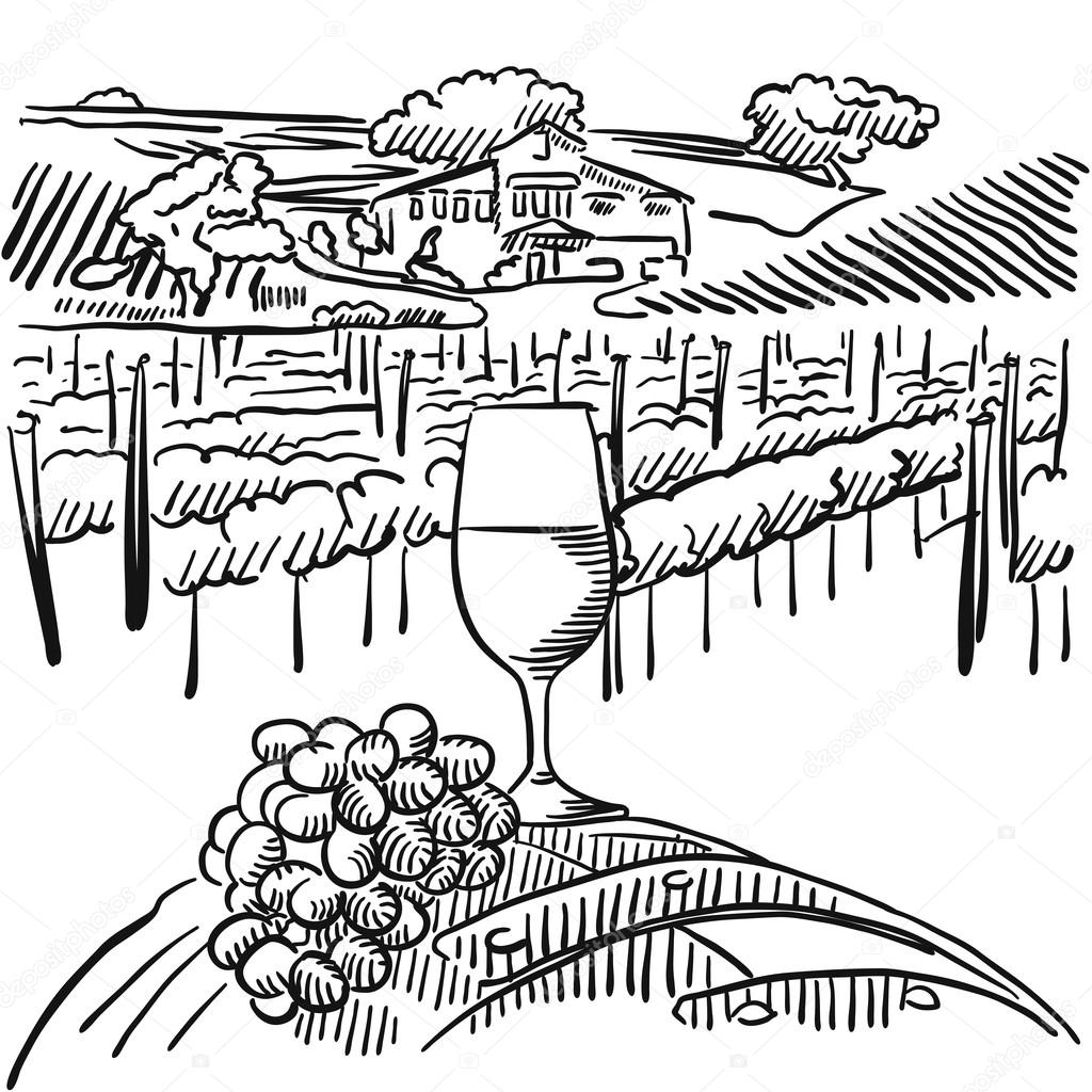 1024x1024 Vineyard With Hills And Glass Of Vine In Foreground Stock Vector