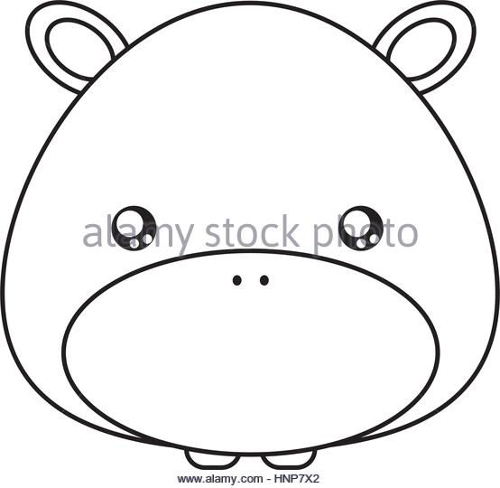 554x540 Hippo Drawing Face Stock Photos Amp Hippo Drawing Face Stock Images