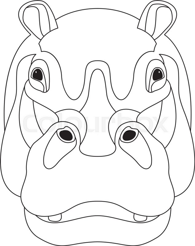 635x800 Hippo Face Vector Illustration Front Side Line Drawing Stock