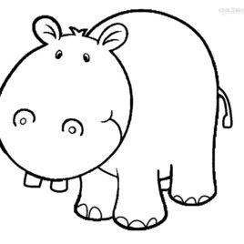 268x268 Hippo Face Coloring Page Kids Drawing And Coloring Pages