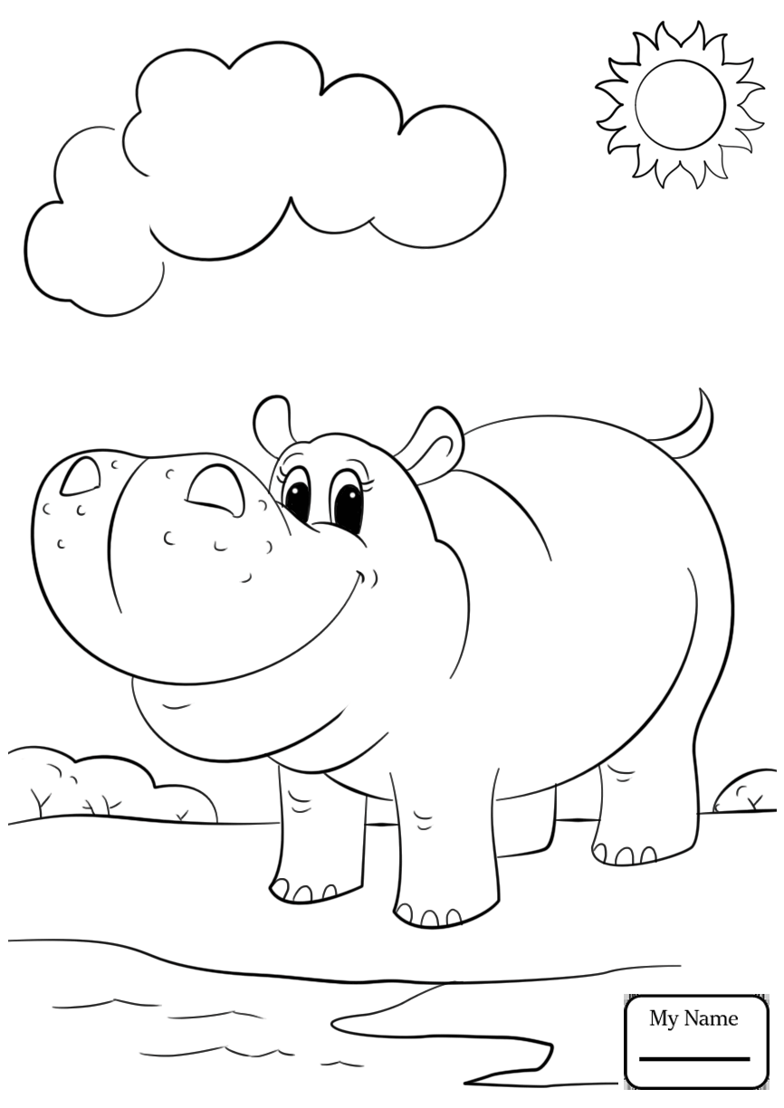 866x1224 Coloring Pages For Kids Hippopotamus Baby Hippo Mammals