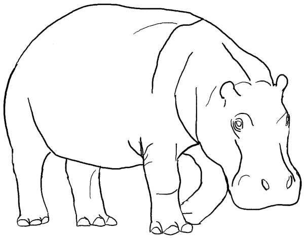 600x470 Coloring Pages