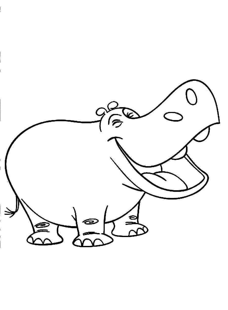 900x1224 Drawn Hippo Outline Pencil And Download Coloring Pages Free