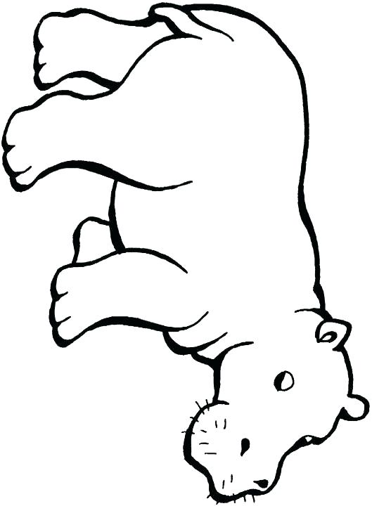 529x720 Baby Hippo Coloring Pages Baby Hippo Coloring Pages Pin Drawn