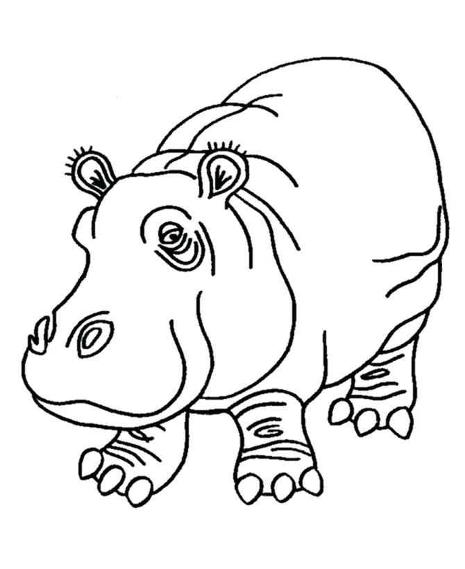 670x820 Hippo Coloring Pages Coloring Pages Of Hippo Cute Baby Hippo