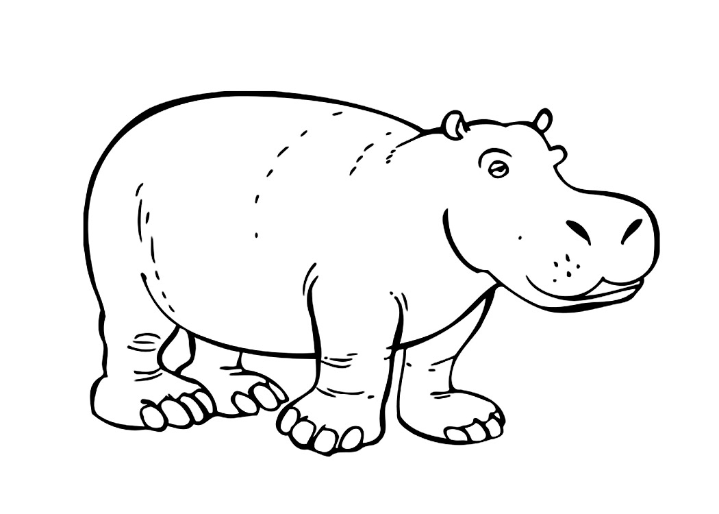1050x750 Hippo Coloring Pages Free Hippo Coloring Pages