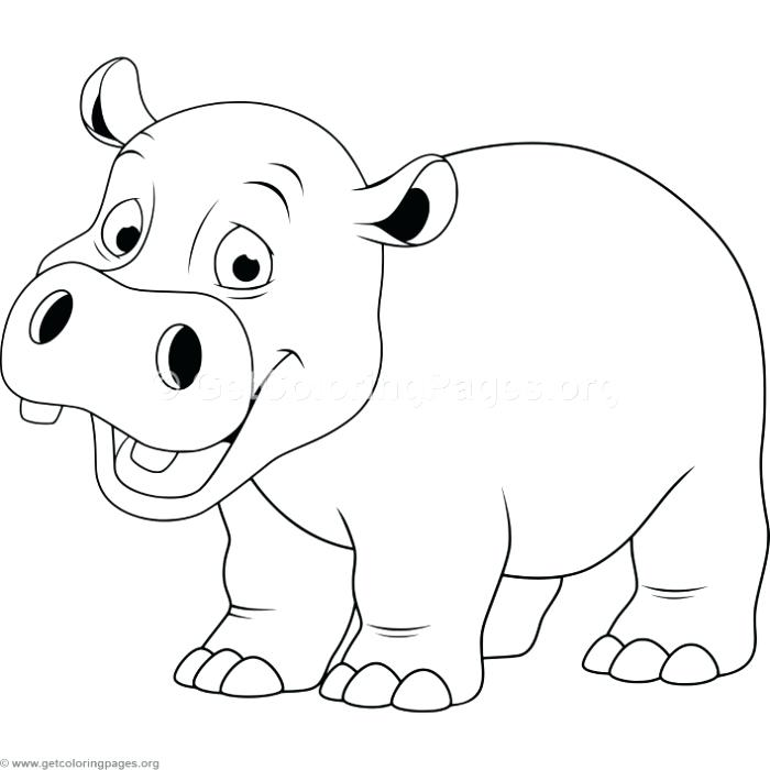 Hippo outline drawing at free for for Baby hippo coloring pages