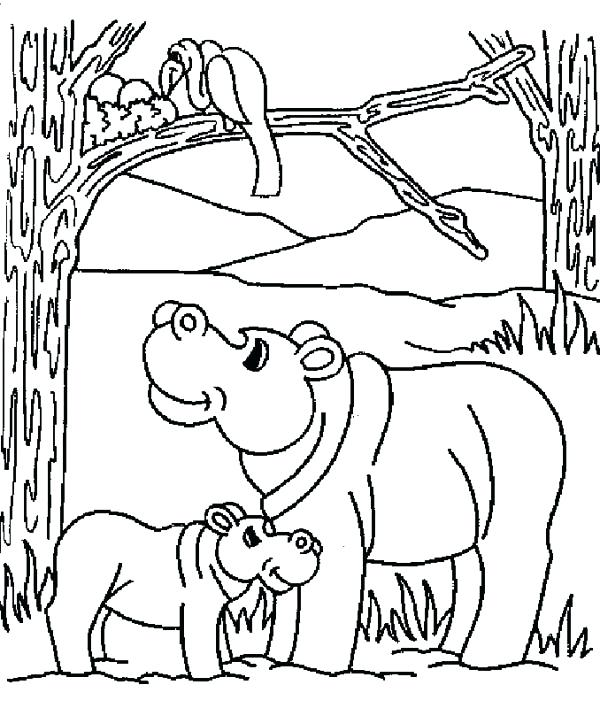 600x708 Baby Hippo Coloring Pages Mother Hippo And Her Baby In The Jungle